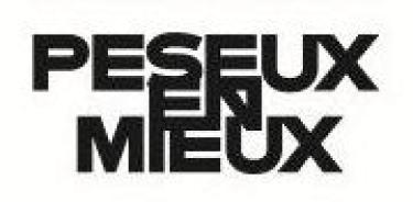 logo PEM_preview